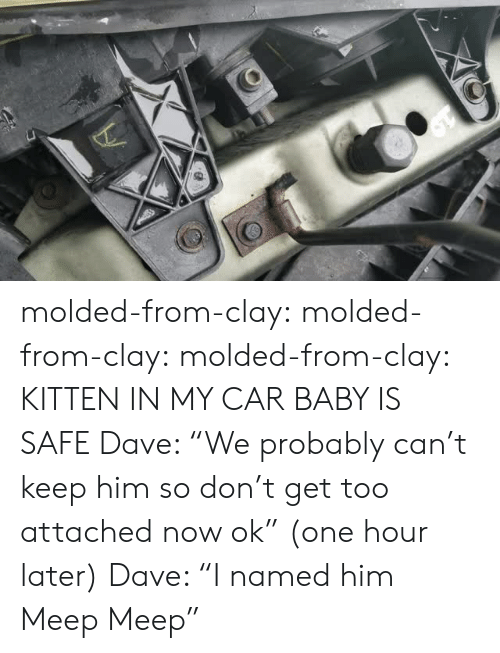 """meep: molded-from-clay: molded-from-clay:  molded-from-clay: KITTEN IN MY CAR BABY IS SAFE    Dave: """"We probably can't keep him so don't get too attached now ok"""" (one hour later) Dave: """"I named him Meep Meep"""""""