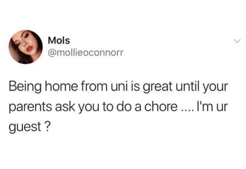 Guest: Mols  @mollieoconnorr  Being home from uni is great until your  I'm ur  parents ask you to do a chore.  guest?