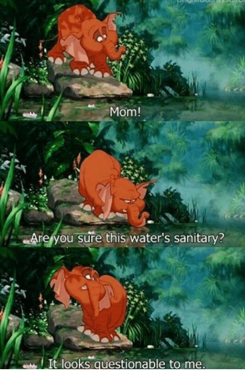memes: Mom!  Are you sure this water's sanitary?  It looks questionable to me.