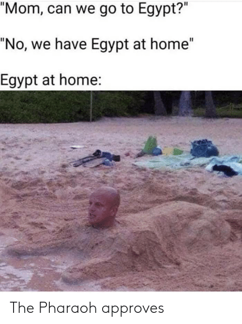 """Egypt: """"Mom, can we go to Egypt?""""  """"No, we have Egypt at home""""  Egypt at home: The Pharaoh approves"""