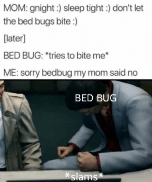 "Slams: MOM: gnight:) sleep tight) don't let  the bed bugs bite:)  [later]  BED BUG: ""tries to bite me  ME: sorry bedbug my mom said no  BED BUG  slams*"