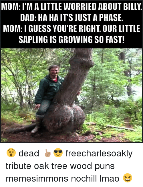 Wood Puns: MOM: I'MA LITTLE WORRIED ABOUT BILLY  DAD: HA HA IT'S JUSTA PHASE  MOM: I GUESS YOU'RE RIGHT OUR LITTLE  SAPLING IS GROWING SO FAST! 😵 dead ☝🏽️😎 freecharlesoakly tribute oak tree wood puns memesimmons nochill lmao 😆