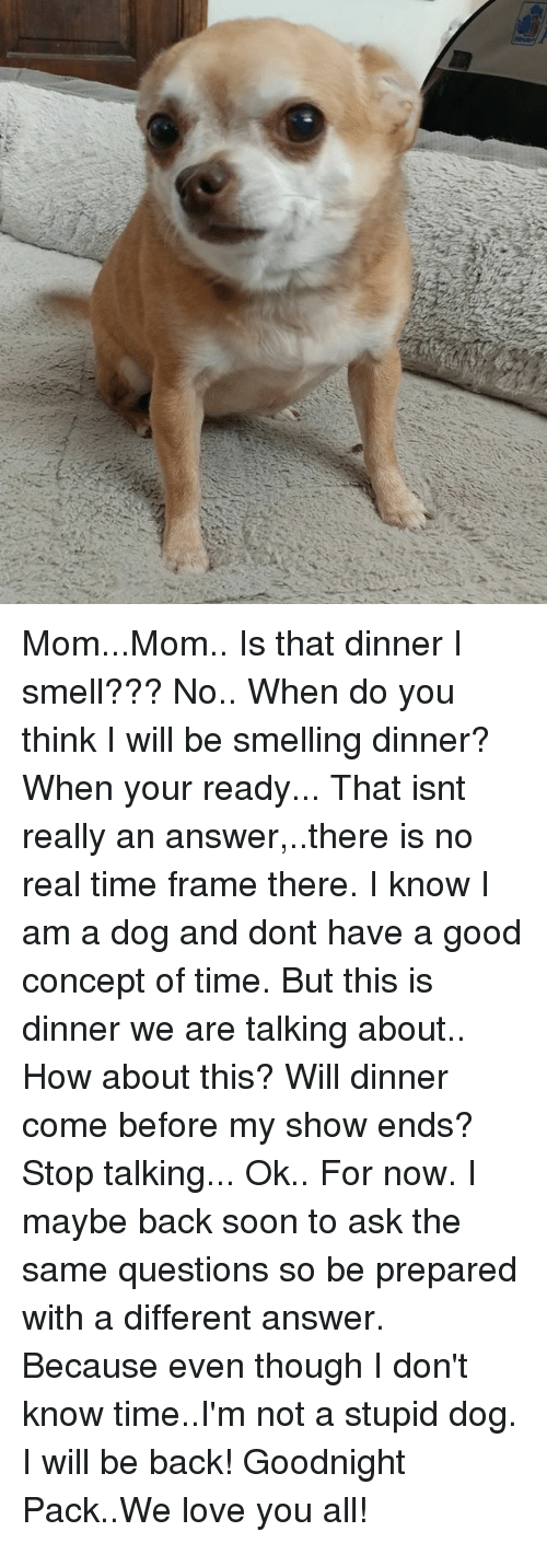MomMom Is That Dinner I Smell??? No When Do You Think I ...
