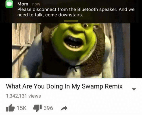 mom now please disconnect from the bluetooth speaker and we 30224828 🅱 25 best memes about what are you doing in my swamp what