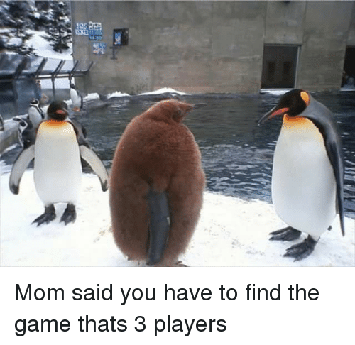 The Game, Game, and Mom: Mom said you have to find the game thats 3 players