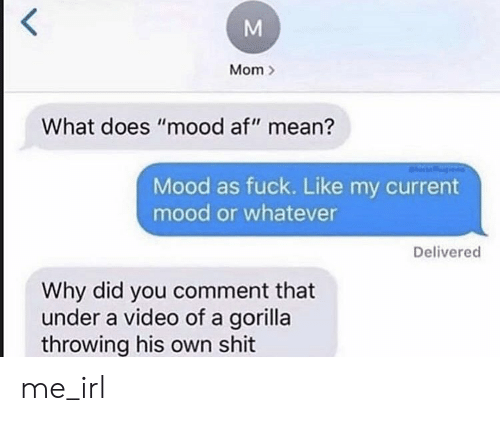 "Current Mood: Mom  What does ""mood af"" mean?  Mood as fuck. Like my current  mood or whatever  Delivered  Why did you comment that  under a video of a gorilla  throwing his own shit  M me_irl"