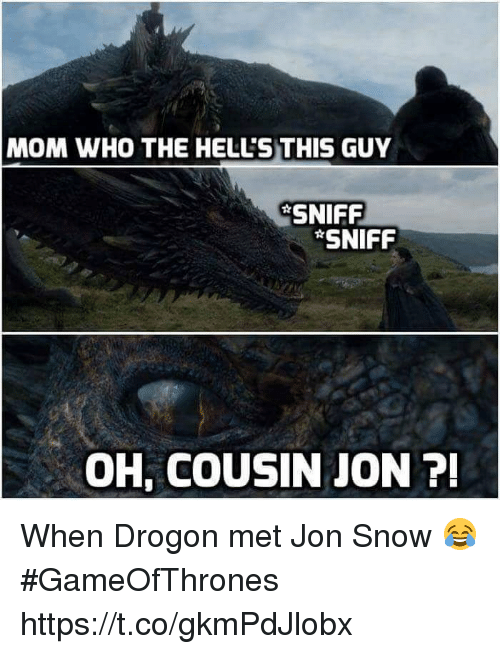 drogon: MOM WHO THE HELL'S THIS GUY  SNIFF  SNIFF  OH, COUSIN JON 7 When Drogon met Jon Snow 😂 #GameOfThrones https://t.co/gkmPdJlobx