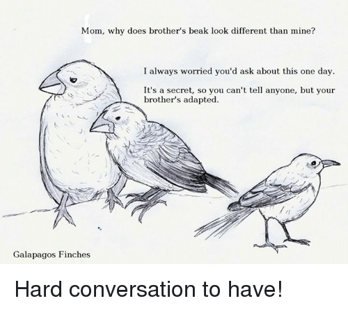 Doe, Memes, and Moms: Mom, why does brother's beak look different than mine?  I always worried you'd ask about this one day.  It's a secret, so you can't tell anyone, but your  brother's adapted.  Galapagos Finches Hard conversation to have!