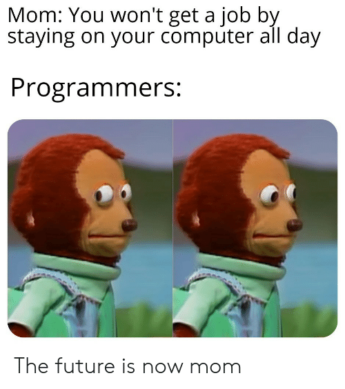You Wont: Mom: You won't get a job by  staying on your computer all day  Programmers: The future is now mom