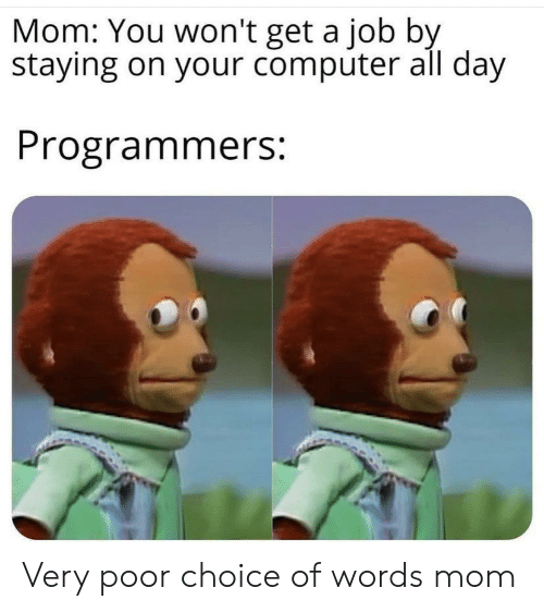 You Wont: Mom: You won't get a job by  staying on your computer all day  Programmers: Very poor choice of words mom