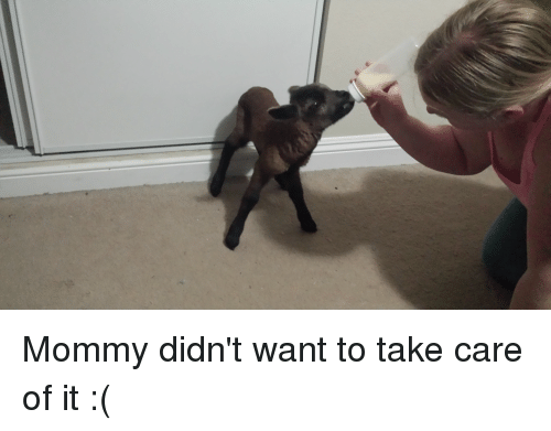 Take Care, Mommy, and  Care: Mommy didn't want to take care of it :(