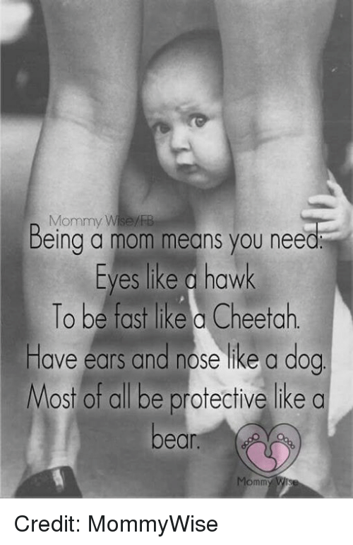 Memes, Cheetah, and Mom: Mommy Wise  Being a mom means you need  Eyes like a hawk  To be fast like a Cheetah.  Have ears and nose like a dog  Most of all be protective like a  bean  Mommy Credit: MommyWise
