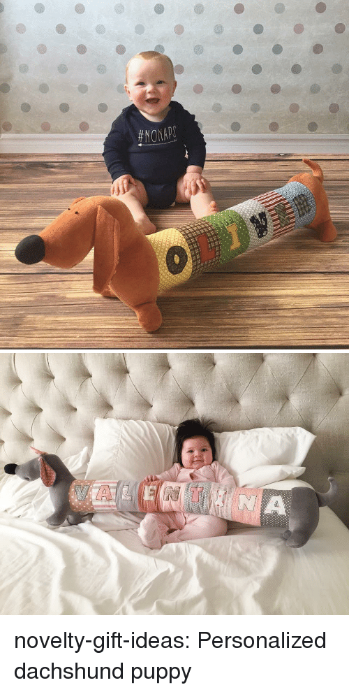 personalized: novelty-gift-ideas:  Personalized dachshund puppy