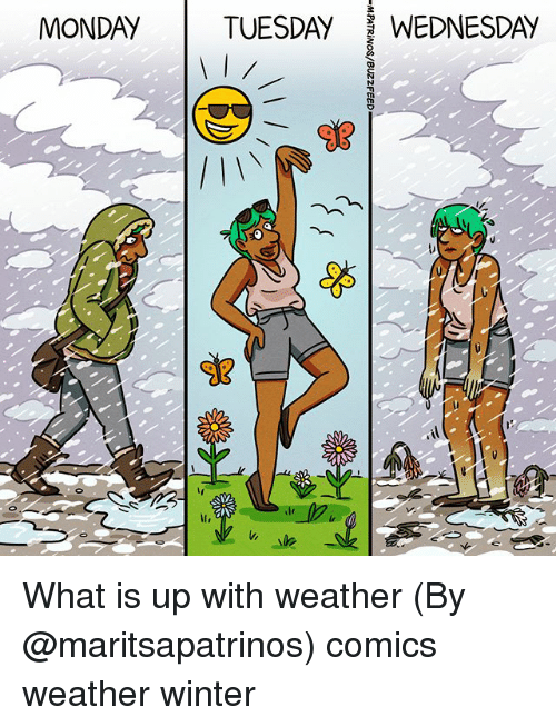Memes, Winter, and Weather: MONDAY  TUESDAY WEDNESDAY What is up with weather (By @maritsapatrinos) comics weather winter