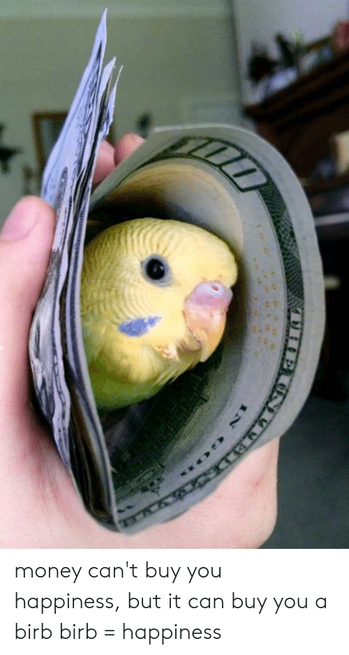 Money Cant Buy: money can't buy you happiness, but it can buy you a birb birb = happiness