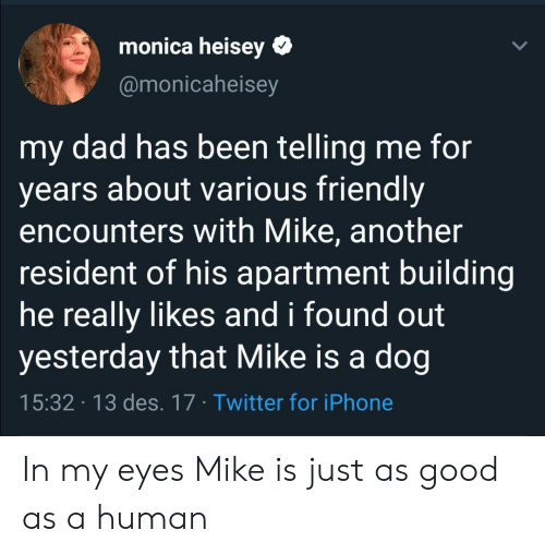 Good As: monica heisey  @monicaheisey  my dad has been telling me for  years about various friendly  encounters with Mike, another  resident of his apartment building  he really likes and i found out  yesterday that Mike is a dog  15:32 13 des. 17 Twitter for iPhone In my eyes Mike is just as good as a human