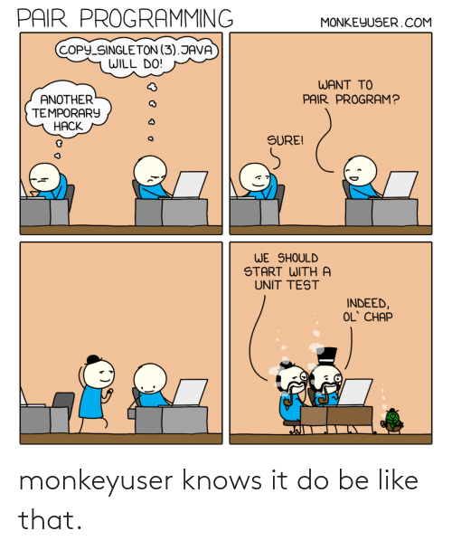 like that: monkeyuser knows it do be like that.