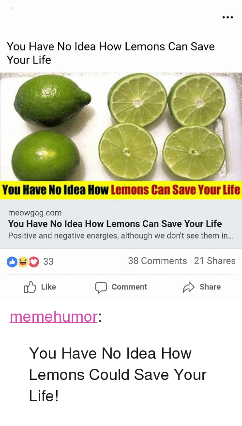 "Life, Tumblr, and Blog: mons Can Save  You Have No Idea How Le  Your Life  You Have No Idea How Lemons Can Save Your Life  meowgag.com  You Have No Idea How Lemons Can Save Your Life  Positive and negative energies, although we don't see them in..  38 Comments 21 Shares  Like  Comment Share <p><a href=""http://memehumor.net/post/173951715818/you-have-no-idea-how-lemons-could-save-your-life"" class=""tumblr_blog"">memehumor</a>:</p>  <blockquote><p>You Have No Idea How Lemons Could Save Your Life!</p></blockquote>"