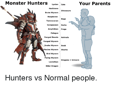 Monster Hunters Lynian Cats Your Parents Herbivore