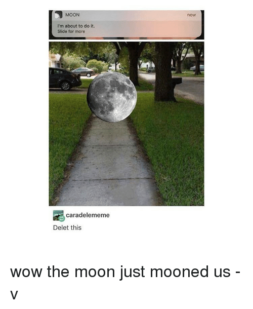 Memes, 🤖, and The Moon: MOON  I'm about to do it.  Slide for more  cara delememe  Delet this  now wow the moon just mooned us -v