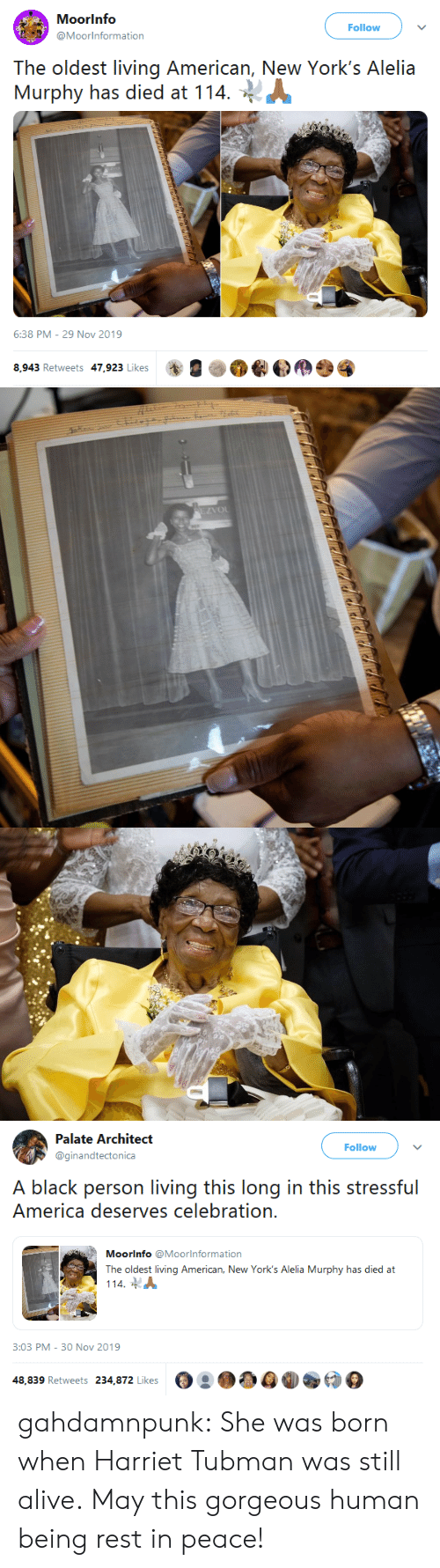 Architect: Moorinfo  Follow  @Moorinformation  The oldest living American, New York's Alelia  Murphy has died at 114  6:38 PM - 29 Nov 2019  8,943 Retweets 47,923 Likes   EZVOL   Palate Architect  Follow  @ginandtectonica  A black person living this long in this stressful  America deserves celebration.  Moorinfo @Moorlnformation  The oldest living American, New York's Alelia Murphy has died at  114  3:03 PM - 30 Nov 2019  48,839 Retweets 234,872 Likes gahdamnpunk: She was born when Harriet Tubman was still alive. May this gorgeous human being rest in peace!
