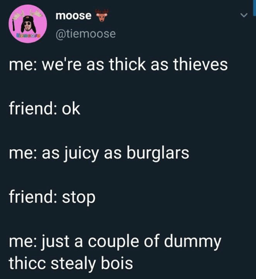 dummy: moose  @tiemoose  emoore  me: we're as thick as thieves  friend: ok  me: as juicy as burglars  friend: stop  me: just a couple of dummy  thicc stealy bois