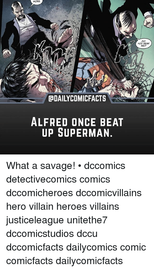 meps: MORe  DO  YOU HEAR  MEP  DAILYCOMICFACTS  ALFRED ONCE BEAT  UP SUPERMAN What a savage! • dccomics detectivecomics comics dccomicheroes dccomicvillains hero villain heroes villains justiceleague unitethe7 dccomicstudios dccu dccomicfacts dailycomics comic comicfacts dailycomicfacts