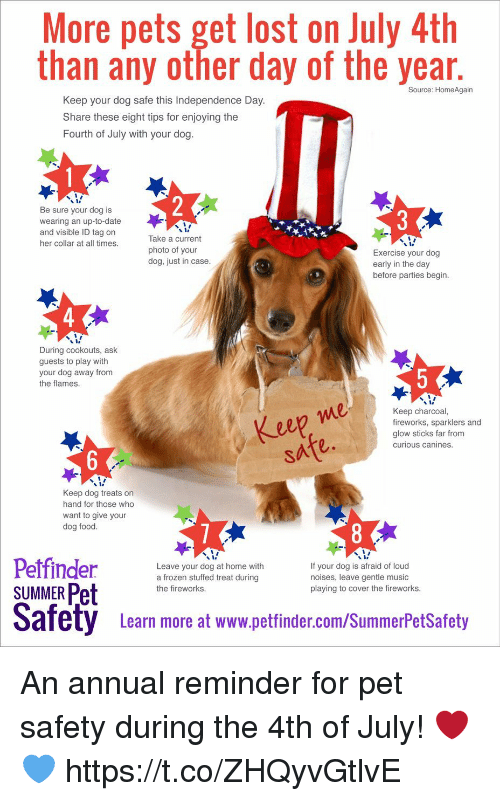 glow sticks: More pets get lost on July 4th  than any other day of the year  Source: HomeAgain  Keep your dog safe this Independence Day  Share these eight tips for enjoying the  Fourth of July with your dog  Be sure your dog is  wearing an up-to-date  and visible ID tag on  her collar at all times  Take a current  photo of your  dog, just in case  Exercise your dog  early in the day  before parties begin  During cookouts, ask  guests to play with  your dog away from  the flames  eep me  safe.  Keep charcoal,  fireworks, sparklers and  glow sticks far from  curious canines  Keep dog treats on  hand for those who  want to give your  dog food  Leave your dog at home with  a frozen stuffed treat during  the fireworks  If your dog is afraid of loud  noises, leave gentle music  playing to cover the fireworks  SUMMER Pet  Safety Leam more at www.pettinder.com/SummerPetSatoty  Learn more at www.petfinder.com/SummerPetSafety An annual reminder for pet safety during the 4th of July! ❤️💙 https://t.co/ZHQyvGtlvE