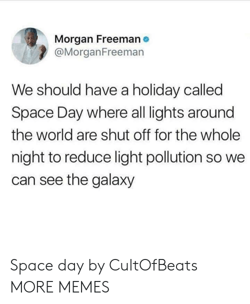 Morgan Freeman: Morgan Freeman  @MorganFreemarn  We should have a holiday called  Space Day where all lights around  the world are shut off for the whole  night to reduce light pollution so we  can see the galaxy Space day by CultOfBeats MORE MEMES