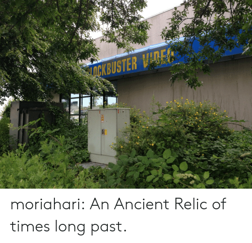 Look What I Found: moriahari:  An Ancient Relic of times long past.