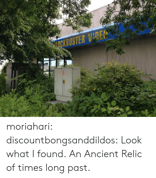 Look What I Found: moriahari:  discountbongsanddildos:  Look what I found.  An Ancient Relic of times long past.