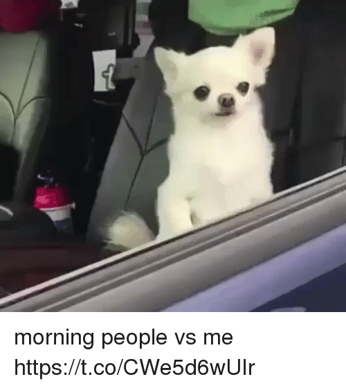 Girl Memes, People, and Morning: morning people vs me https://t.co/CWe5d6wUIr