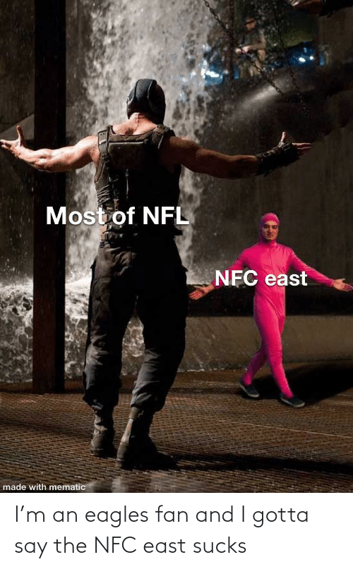 nfc east: Most of NFL  NFC east  made with mematic I'm an eagles fan and I gotta say the NFC east sucks
