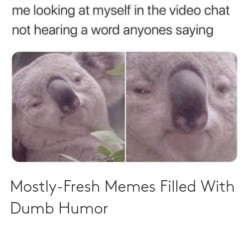 Fresh: Mostly-Fresh Memes Filled With Dumb Humor