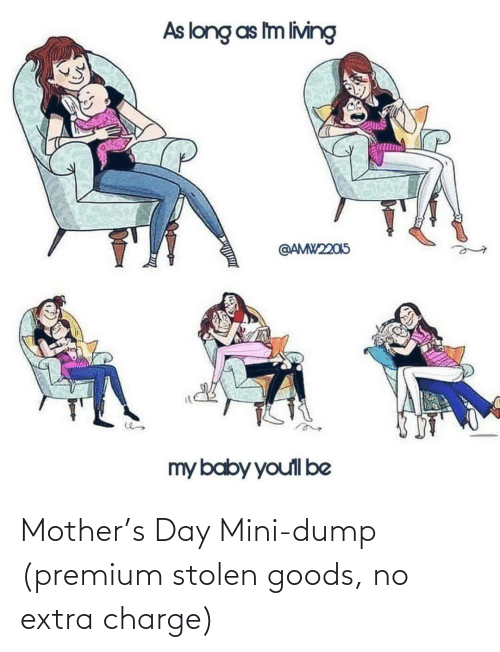 Goods: Mother's Day Mini-dump (premium stolen goods, no extra charge)