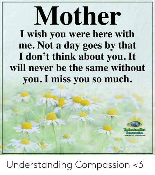 i wish you were here: Mother  I wish you were here with  me. Not a day goes by that  I don't think about you. It  will never be the same without  you. I miss you so much.  Understanding  Compassion  UnderstandingCompassion.com Understanding Compassion <3