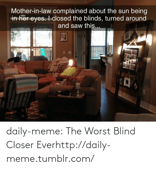 meme: Mother-in-law complained about the sun being  in her eyes. I closed the blinds, turned around  and saw this... daily-meme:  The Worst Blind Closer Everhttp://daily-meme.tumblr.com/