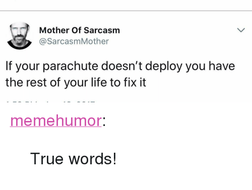 """Life, True, and Tumblr: Mother Of Sarcasm  @SarcasmMother  If your parachute doesn't deploy you have  the rest of your life to fix it <p><a href=""""http://memehumor.net/post/173477611275/true-words"""" class=""""tumblr_blog"""">memehumor</a>:</p>  <blockquote><p>True words!</p></blockquote>"""