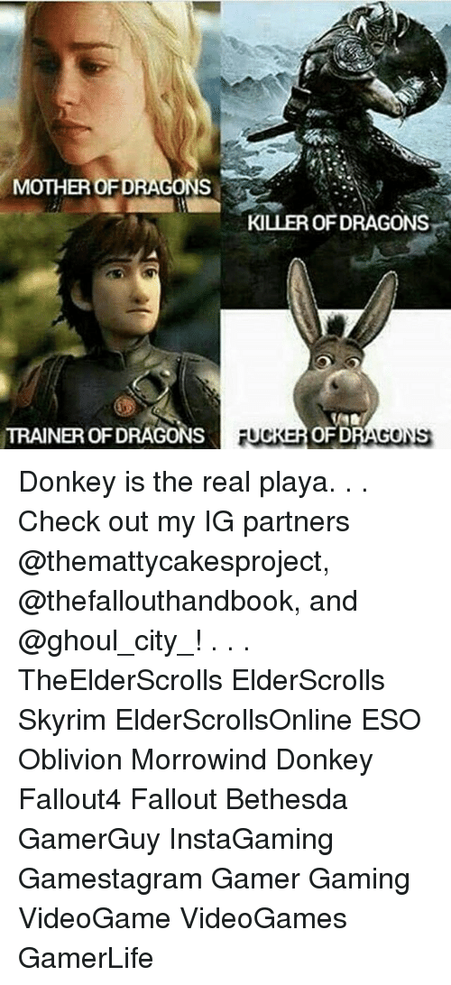 morrowind: MOTHER OFDRAGONS  TRAINEROFDRAGONS  KILLER OF DRAGONS  RUCKER OFD Donkey is the real playa. . . Check out my IG partners @themattycakesproject, @thefallouthandbook, and @ghoul_city_! . . . TheElderScrolls ElderScrolls Skyrim ElderScrollsOnline ESO Oblivion Morrowind Donkey Fallout4 Fallout Bethesda GamerGuy InstaGaming Gamestagram Gamer Gaming VideoGame VideoGames GamerLife