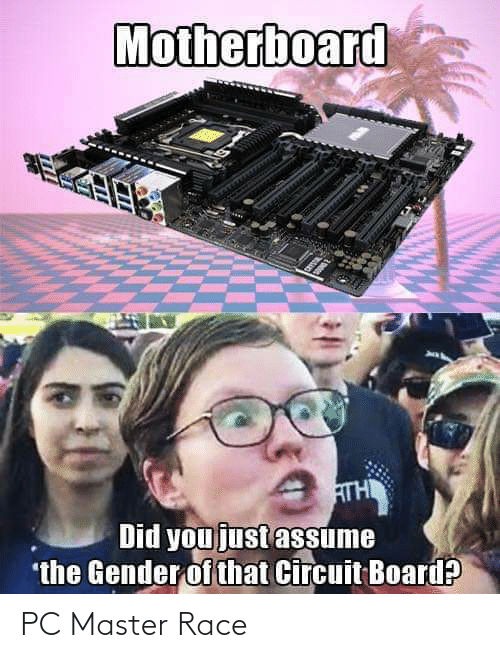 Did You Just Assume: Motherboard  ATH  Did you just assume  *the Gender of that Circuit Board?P PC Master Race