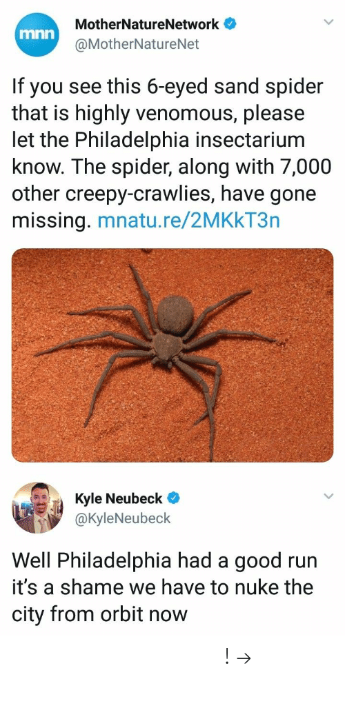 nuke: MotherNatureNetwork  @MotherNatureNet  mnn  If you see this 6-eyed sand spider  that is highly venomous, please  let the Philadelphia insectarium  know. The spider, along with 7,000  other creepy-crawlies, have gone  missing. mnatu.re/2MKkT3n  ич Ja Kyle Neubeck@  @KyleNeubeck  Well Philadelphia had a good run  it's a shame we have to nuke the  city from orbit now 𝘍𝘰𝘭𝘭𝘰𝘸 𝘮𝘺 𝘗𝘪𝘯𝘵𝘦𝘳𝘦𝘴𝘵! → 𝘤𝘩𝘦𝘳𝘳𝘺𝘩𝘢𝘪𝘳𝘦𝘥
