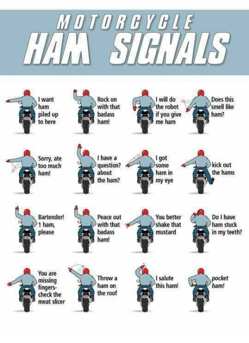 Dank, Smell, and Sorry: MOTORGYCLE  HAM SIGNALS  want  ham  piled up  to here  Rock on  with that  badass  ham!  I will do  the robot  if you give  me ham  Does this  smell like  ham?  I got  ham in  my eye  I have a  Sorry, ate  too much  ham!  question?  about  kick out  the hams  the ham?  Bartender!  1 ham,  Peace out  with that  badass  ham  You better  shake that  mustard  Do I have  ham stuck  in my teeth?  ease  You are  missing  fingers-  check the  meat slicer  Throw a  ham on  the roof  I salute  this ham!  pocket  ham!