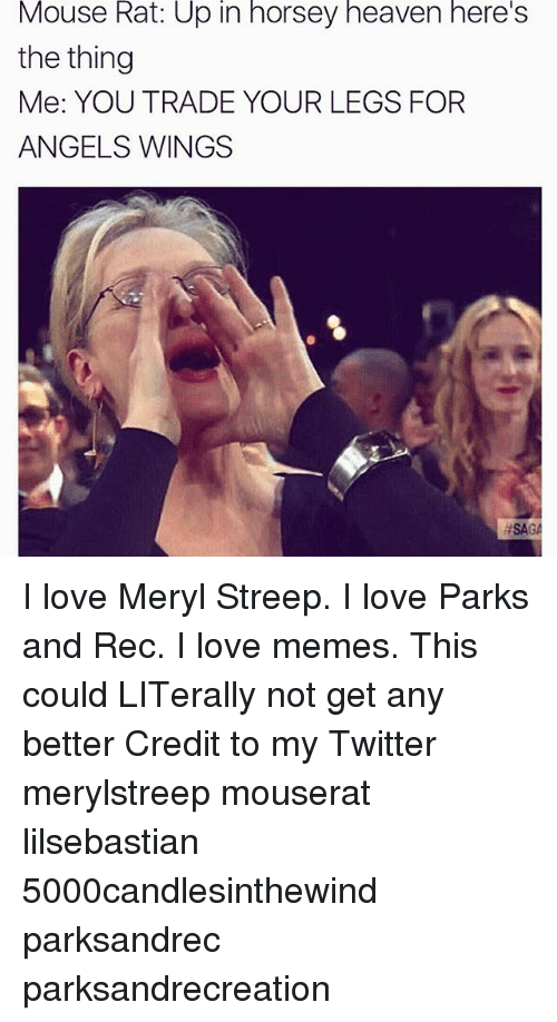 trading: Mouse Rat: Up in horsey heaven here's  the thing  Me: YOU TRADE YOUR LEGS FOR  ANGELS WINGS  HSAG I love Meryl Streep. I love Parks and Rec. I love memes. This could LITerally not get any better Credit to my Twitter merylstreep mouserat lilsebastian 5000candlesinthewind parksandrec parksandrecreation