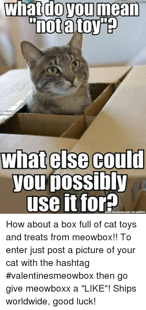 """mouses: mouse  What do you mean  """"notato  what else could  you possibly  use it for  addicts  www.facebook.com/cat How about a box full of cat toys and treats from  meowbox!! To enter just post a picture of your cat with the hashtag #valentinesmeowbox then go give meowboxx a """"LIKE""""! Ships worldwide, good luck!"""