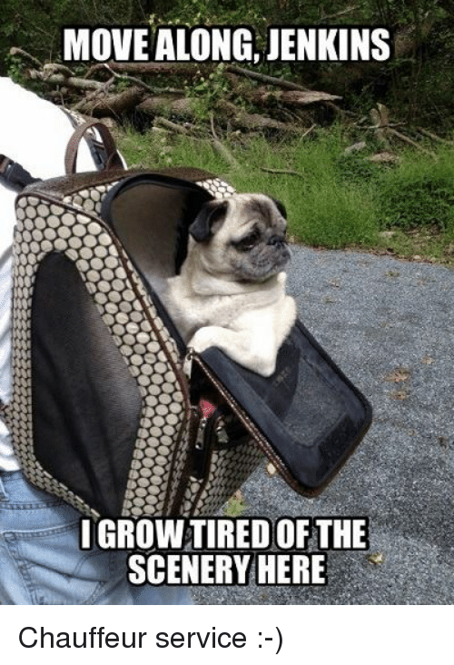 Memes, 🤖, and Move: MOVE ALONG, JENKINS  IGROWTIRED OF THE  SCENERY HERE Chauffeur service :-)
