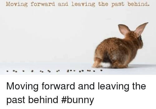 Memes, 🤖, and Bunny: Moving forward and leaving the past behind. Moving forward and leaving the past behind     #bunny