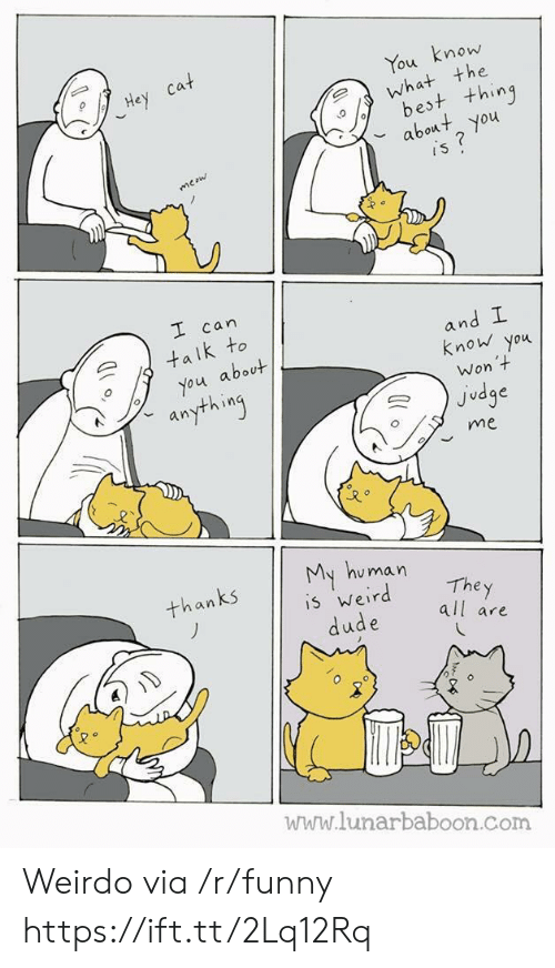 y all: mow  the  ou  est t+hing  bot you  can  an  k to  know you  about  Won  Judge  an  me  u man  The y  all are  an  5 Wer  www.lunarbaboon.com Weirdo via /r/funny https://ift.tt/2Lq12Rq