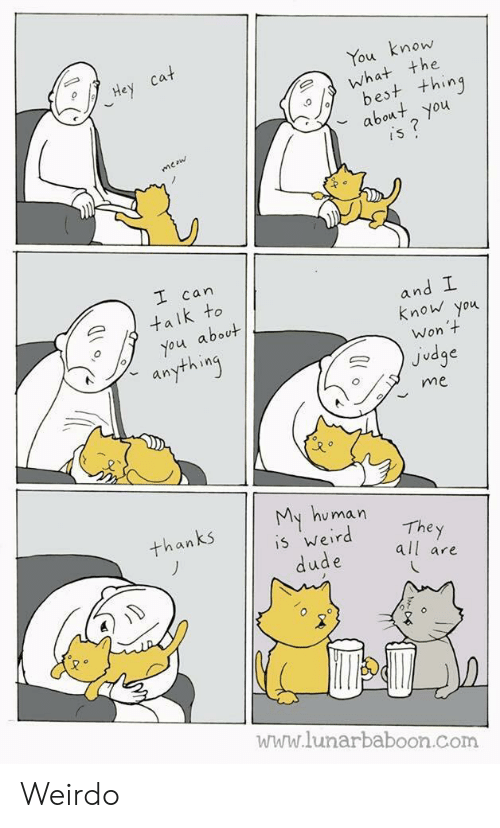 y all: mow  the  ou  est t+hing  bot you  can  an  k to  know you  about  Won  Judge  an  me  u man  The y  all are  an  5 Wer  www.lunarbaboon.com Weirdo