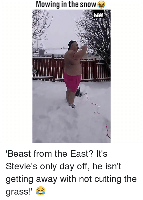 Memes, Bible, and Snow: Mowing in the snow  LAD  BIBLE 'Beast from the East? It's Stevie's only day off, he isn't getting away with not cutting the grass!' 😂