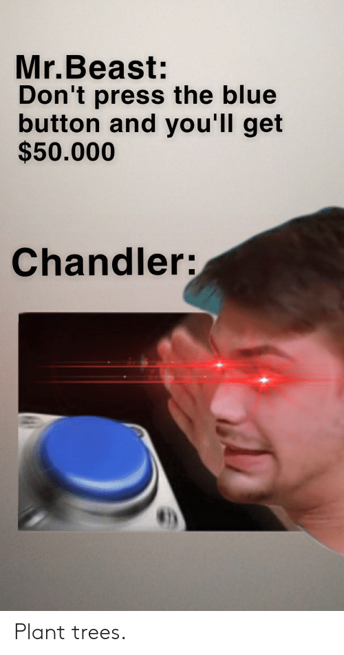 Blue Button: Mr.Beast:  Don't press the blue  button and you'll get  $50.000  Chandler: Plant trees.